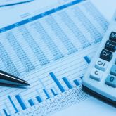 What is the difference between dividend reinvesting option and growth option?